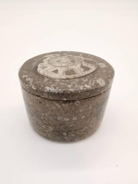 Marmor-Dose mit Ammoniten